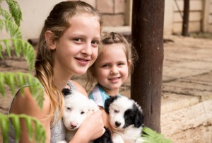 sisters with sheep dog puppies